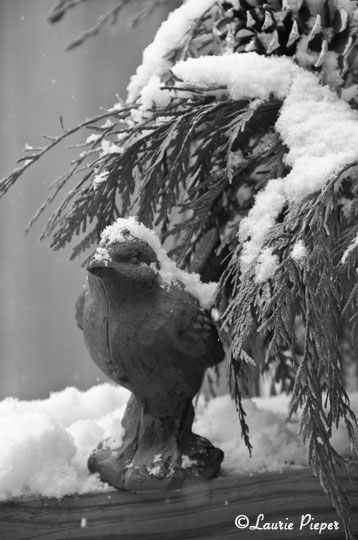 BirdStatueInSnow