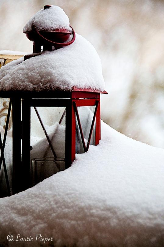 SnowyRedLantern