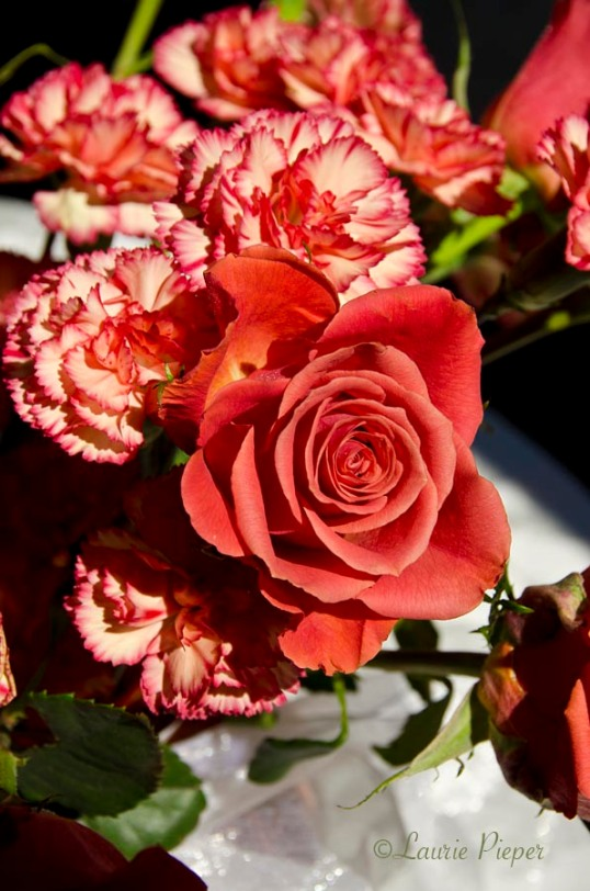 Roses&CarnationsOrange