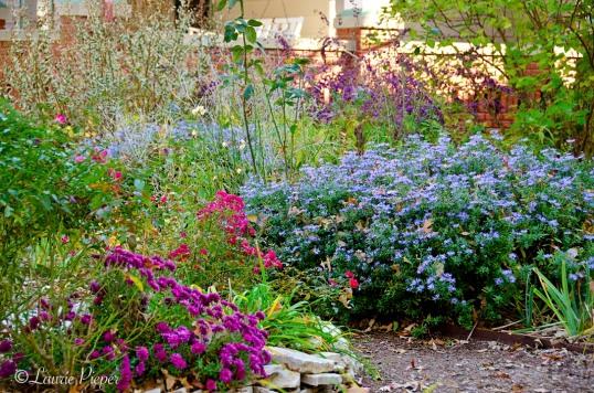 Garden111014