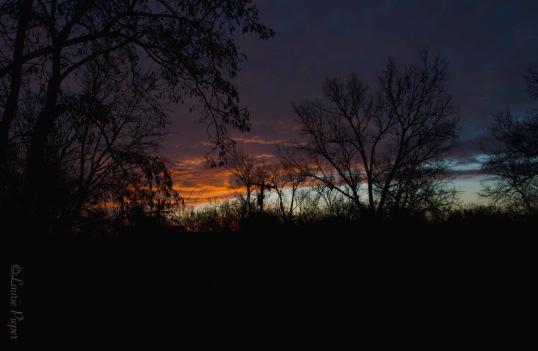 SunriseDec2315