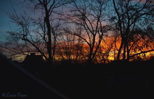 Sunrise&RooftopsFeb